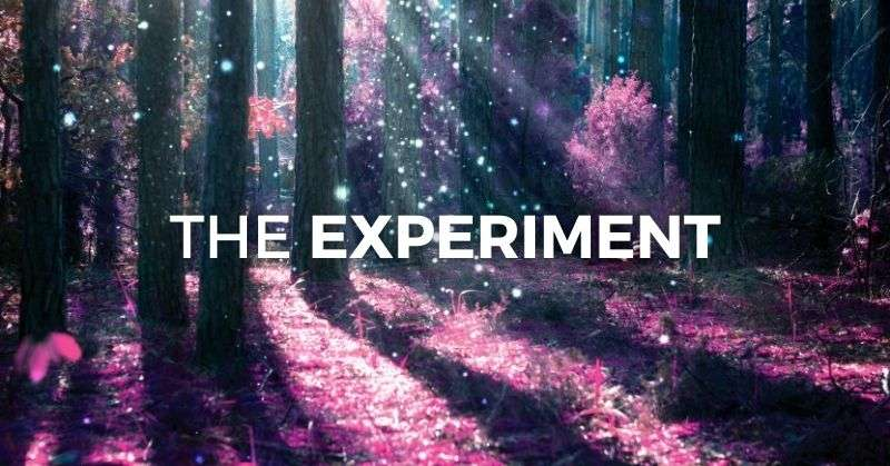 The experiment banner image